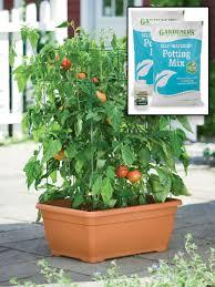 tomato planter all in one tomato success kit gardener u0027s supply