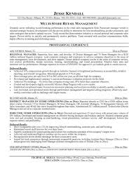 Resume Sample Director by Retail Manager Resume Examples 20 Retail Assistant Manager 4