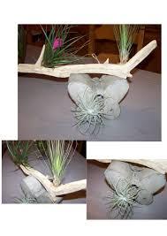 oiseaux en metal création pour déco murale une boîte à oiseau en métal vieilli