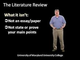Literature review in research methodology The social pillar of sustainable development  a literature review and framework for policy analysis