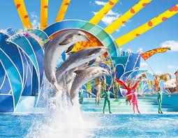 seaworld black friday deals seaworld orlando tickets discount tickets to seaworld