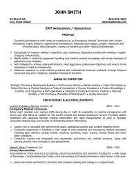 The Best Resume In The World by Visual Merchandiser Resume Formats Csat Co