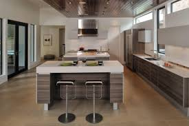 Modern European Kitchen Cabinets 100 European Style Kitchen Cabinet Doors Great C Pnf Euro