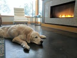 Cottages To Rent Dog Friendly by Pet Friendly Vacation Rentals In Bend Oregon
