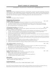 Cover Letter  Resume Statement Examples Resume Summary Examples     Binuatan Dreaming Feet On The Ground   English Cv