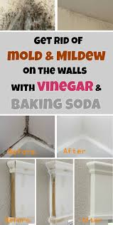Cleaning Grease Off Walls by Get Rid Of Mold U0026 Mildew On The Walls With Vinegar And Baking Soda