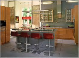 Kosher Kitchen Design Interesting Blue Counter For Modern Kitchen Design In Wide Space