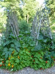 diy garden trellis ideas rock farmer