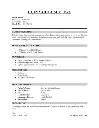 English Cv Template Actltk  cover letter cv examples uk and     Dayjob Credit Controller CV Sample