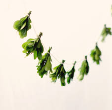 Decorative Garlands Home by Miniature Leaf Garland Natural Home Decor Boxwood Wall