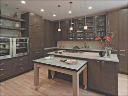 60 Inch Kitchen Sink Base Cabinet by Base Cabinets Home Depot Base Cabinets Within Satisfying