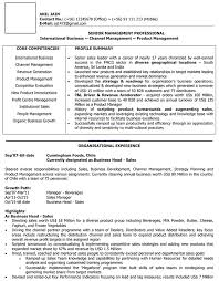 Sales Manager Sample Resume by International Sales Cv Format U2013 International Sales Resume Sample