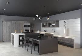 Small Kitchen Design Ideas 2012 100 Designer Kitchens Ergo Designer Kitchens Blog Kitchen