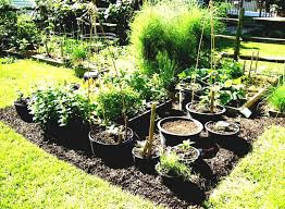 rooftop garden benefits archives garden trends