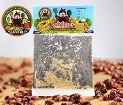amazon how long until black friday ends amazon com 1500 live ladybugs good bugs ladybugs
