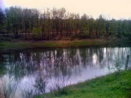 Liqeni Artificial i Tiranes (Foto) Images?q=tbn:ANd9GcTcVUP_bYgpooGJMRoPYlD4BXIV3gx_qNDhGFtVQF0HRWQUaitjkQ