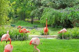 the most beautiful gardens in paris paris design agenda