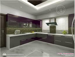 kerala home design floor plans kitchen interior views ss kitchen