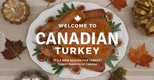 what does canadian thanksgiving celebrate canadian turkey