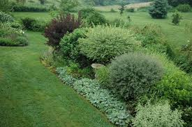 garden design garden design with bright shrubs gardenpuzzle