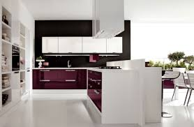 gorgeous contemporary black and white kitchen with frestanding