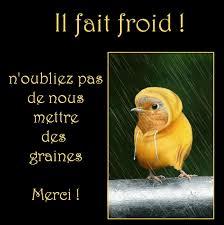 Pensez aux oiseaux l'hiver arrive. Images?q=tbn:ANd9GcTeZ7tOtEr3ZAK8yf3LDp1NDUvxLL88SCvVXXowusi64eN9yQEDRQ