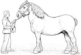 clydesdale horse coloring page free printable coloring pages