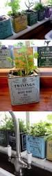 20 best herbs indoor images on pinterest gardening kitchen and