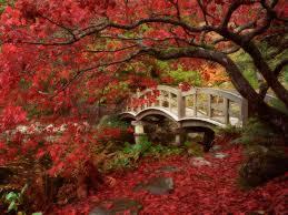 Jardins de Persefone Images?q=tbn:ANd9GcTfKj7GjlZxkbnMwhoSetu-RIJIqabtCcqXUDgz71aM9OUSUjw2