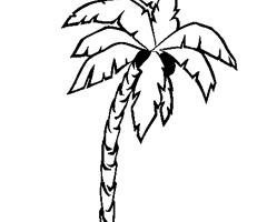 16 dessins de coloriage cocotier imprimer à imprimer