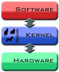 Trabajo del kernel