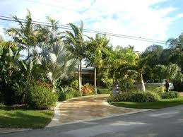 small florida backyard landscaping ideas landscaping ideas for