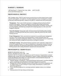 professionalresume example critique continued