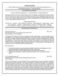 Director Of Operations Resume Sample by Project Manager Resume