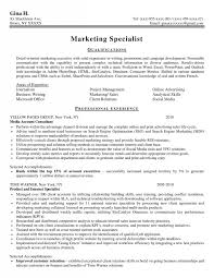 resume writers albany ny zip code professional resume writers Buy college application essays outline