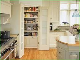 Blind Corner Kitchen Cabinet by Excellent Corner Kitchen Storage Cabinet For Home U2013 Tall Kitchen
