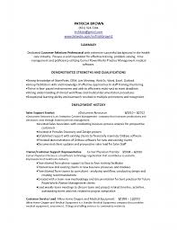 Career Summary  resume  career summary for resume   advancers co     Resume Professional Summary Customer Service Customer Service       career summary