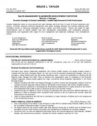 Hotel Sales Manager Resume Sample With Inside Sales Maintenance