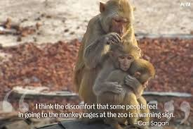 List of Pros and Cons of Zoos   OccupyTheory However  this is not the case for other zoos around the world  some zoos are no better than dungeons that hold greatly distressed animals  they drive their