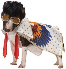 rock n roll king dog costume costume craze
