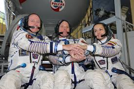 file expedition 41 crew members in front of the soyuz tma