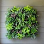 Living Wall Planter-Pamela Crawford Wall Side Planter-Living Walls