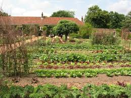advantages to using sprinklers in your vegetable garden gardens com