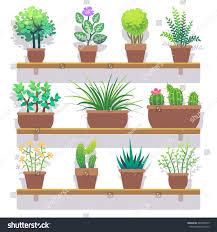 indoor plants pots flat icons set stock vector 422580475