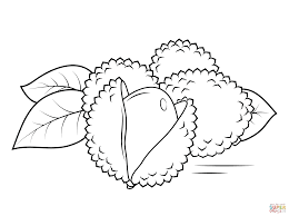 whole and open lechees coloring page free printable coloring pages