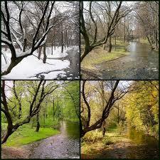 Bir yılda dört mevsim var.