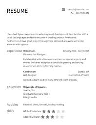 Examples For A Resume by An Example Of A Resume 17 Best Example Resumes Top Resumes