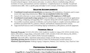 Pro Resumes Stand Out Resume Templates  Bitwin co   professional resume formats