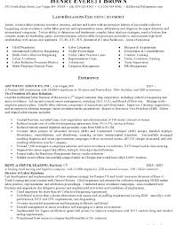 Sample Lawyer Resumes by Legal Resume Examples Legal Compliance Officer Resume Example