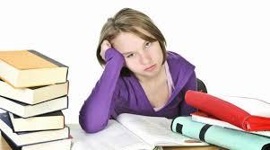 best essay writing service Imhoff Custom Services Best Essay Writing Services Best Dissertation Writing Services Best Dissertation Writing